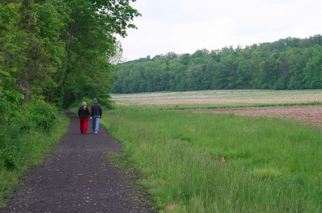 60 Hikes Within 60 Miles: Harrisburg, Bullfrog Pond, Matt Willen, Harrisburg hiking