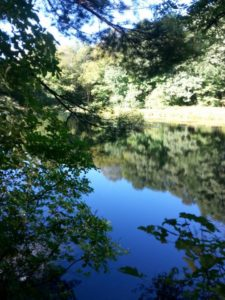 60 Hikes Within 60 Miles: Boston, Lafe Low, Nonet Peak, hikes near Boston,