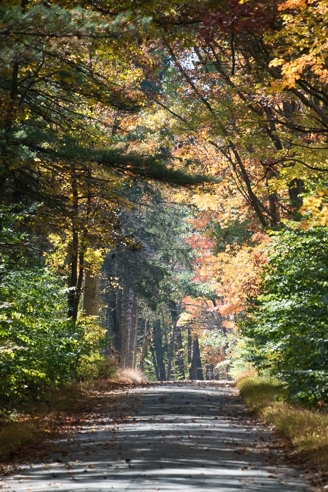 Camping in New Jersey's High Point State Park - Menasha Ridge Press Blog