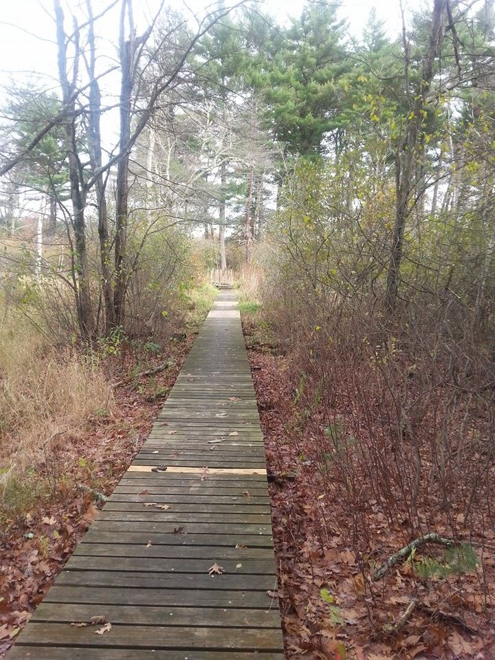 60 Hikes Within 60 Miles: Boston, Lafe Low, hikes near Boston, Massachusetts hiking
