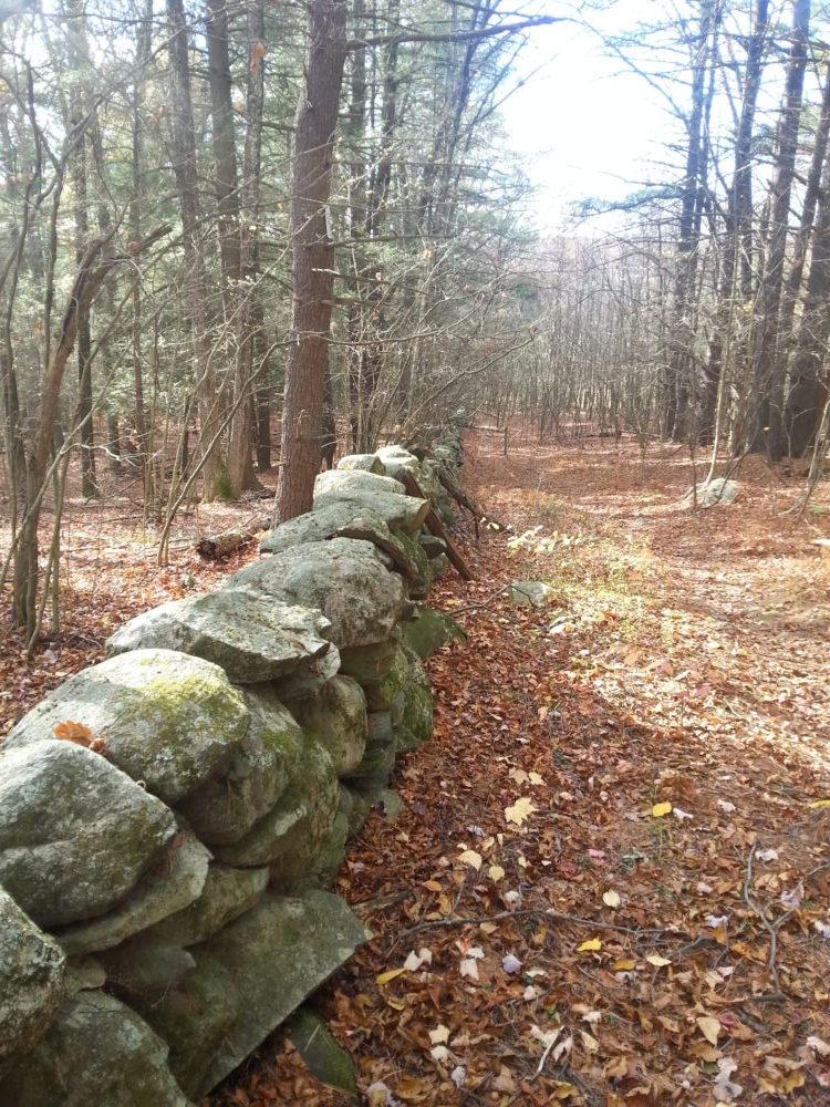 60 Hikes Within 60 Miles: Boston, Lafe Low, hikes near Boston, Cedar Hill Sawink Farm