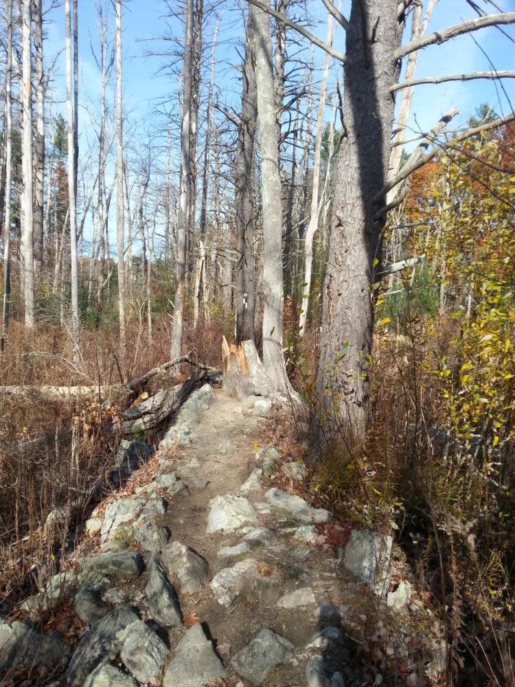 60 Hikes Within 60 Miles: Boston, Lafe Low, hikes near Boston, Skug River