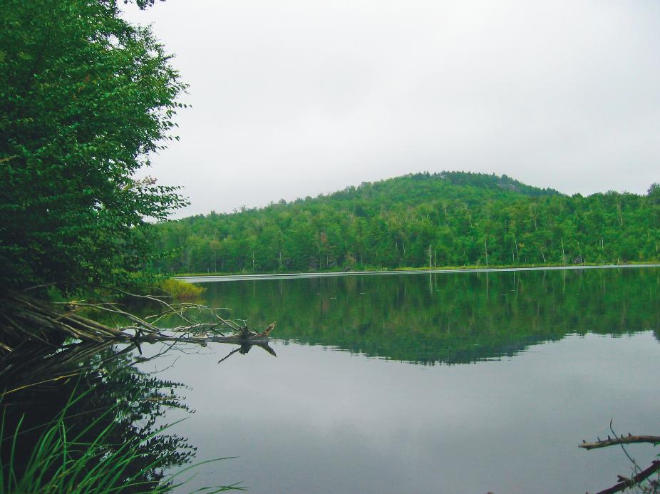 Five-Star Trails: Adirondacks, Tim Starmer, Menasha Ridge Press, hiking in the Adirondacks, Cat Mountain, Stewart and Indian Lakes, Tongue Mountain Range