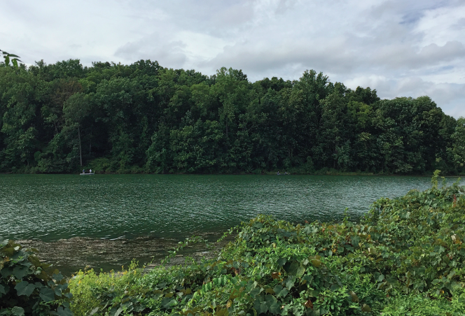 60 Hikes Within 60 Miles: Philadelphia, hiking in Philadelphia, swimming near Philadelphia, Green Lane Park