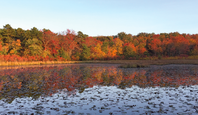 Fantastic Summer Lake Hikes Near Philadelphia - Menasha Ridge Press Blog
