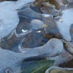 Five-Star Trails: The Ozarks, Jim Warnock, Lake Alma,