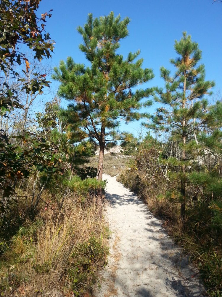 60 Hikes Within 60 Miles: Boston, Boston hiking, Lafe Low, Menasha Ridge Press