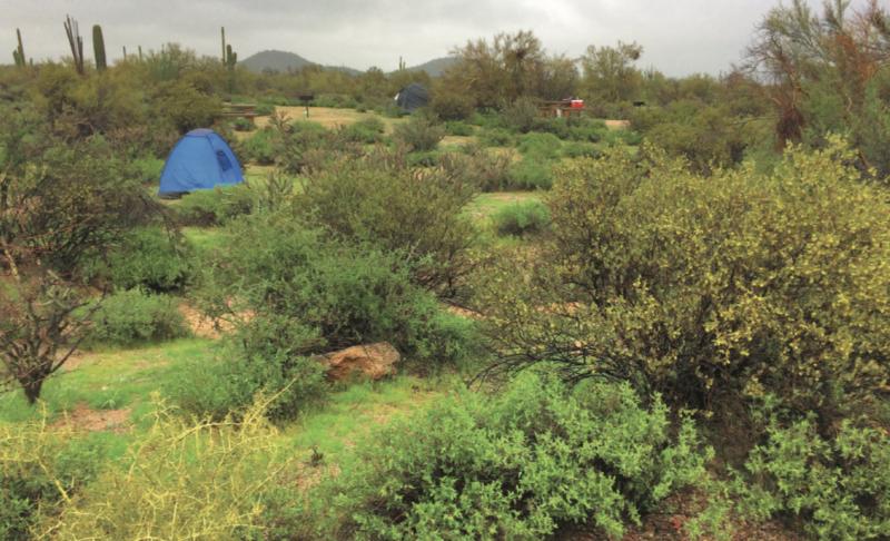 Best Tent Camping: Arizona, Winter camping Arizona